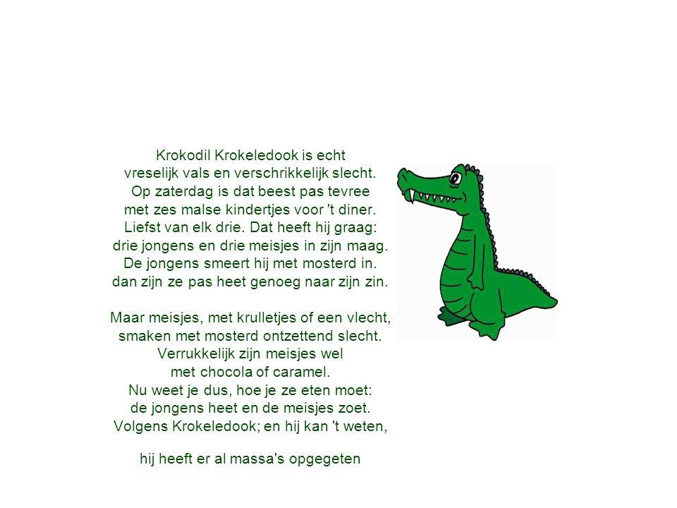 Krokodil Krokeledook is echt vreselijk vals en verschrikkelijk slecht