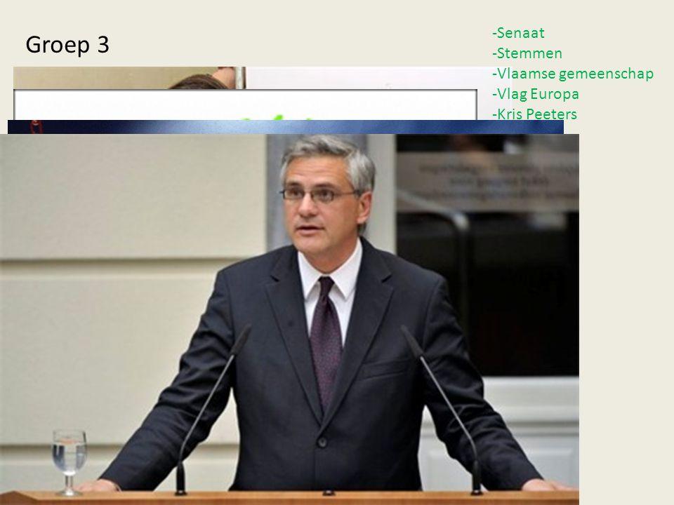 -Senaat Stemmen Vlaamse gemeenschap Vlag Europa Kris Peeters Groep 3