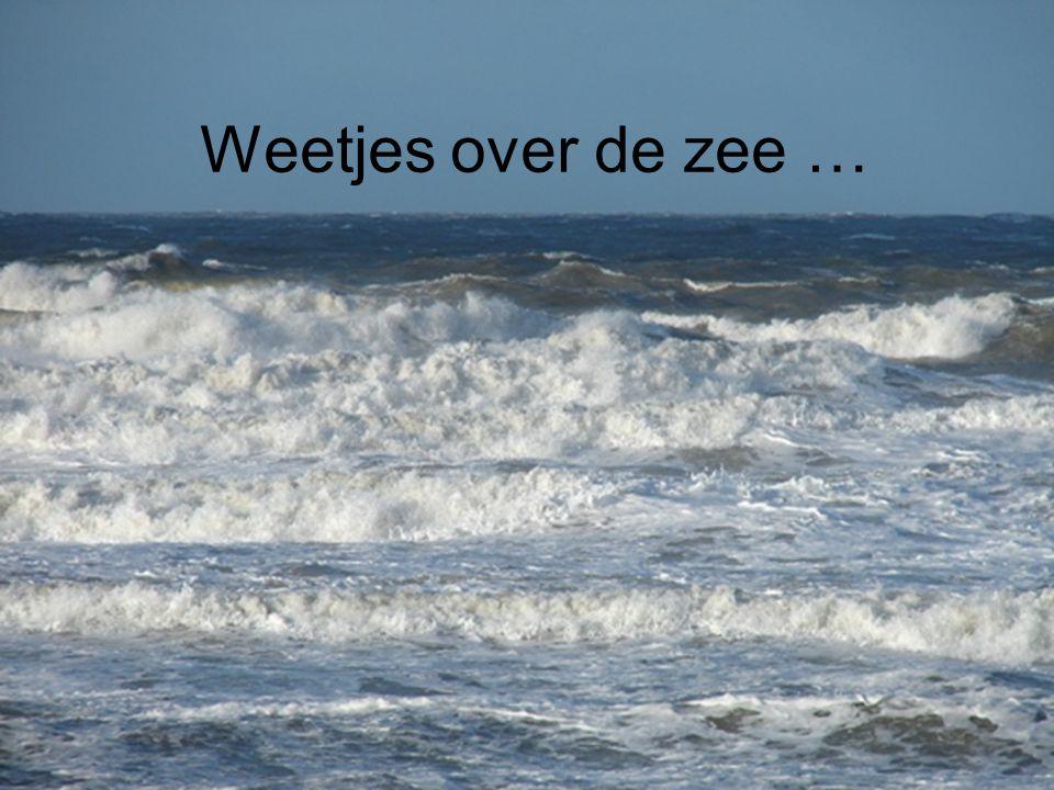 Citaten Over De Zee : Weetjes over de zee … ppt video online download