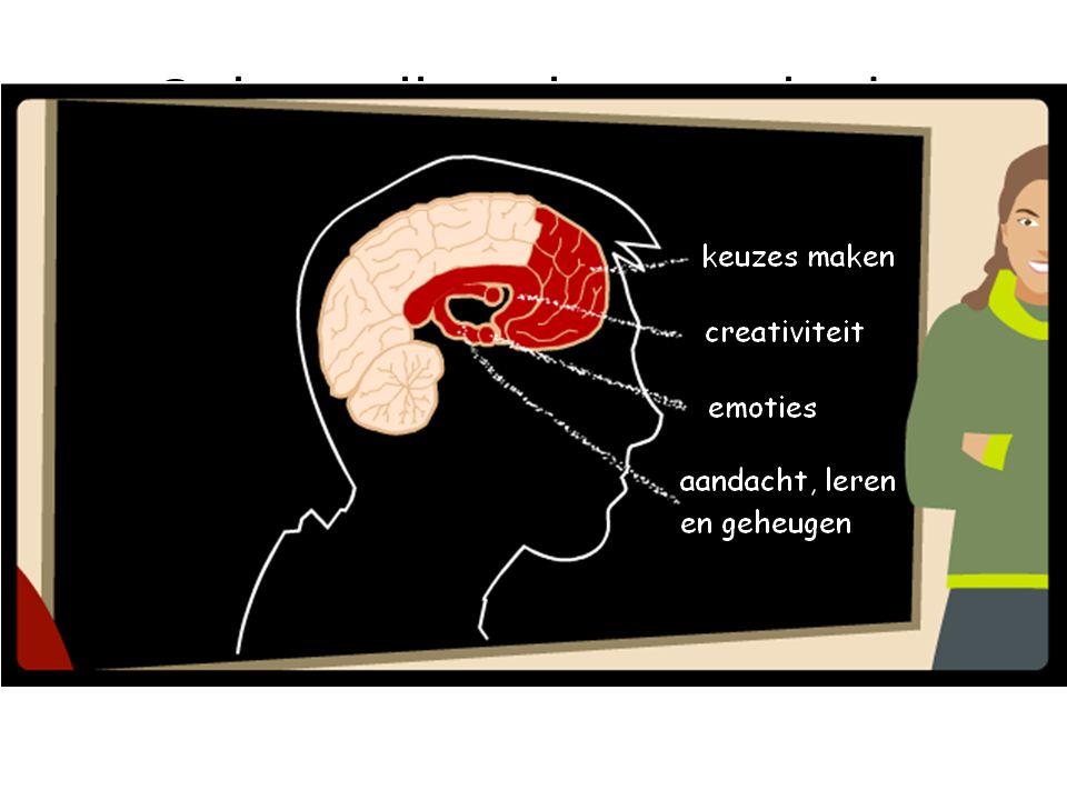 Onherstelbare hersenschade