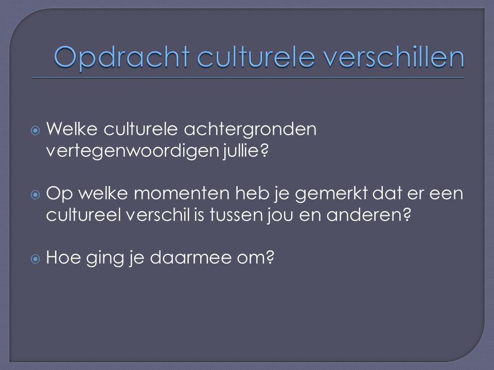 Opdracht culturele verschillen