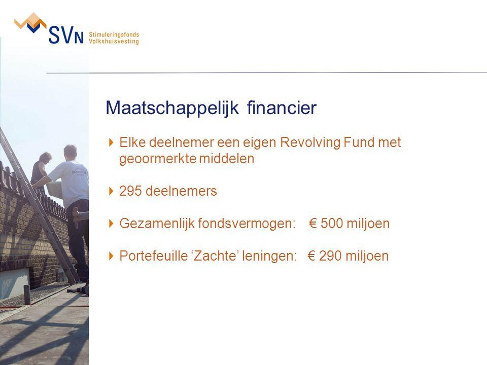 Maatschappelijk financier