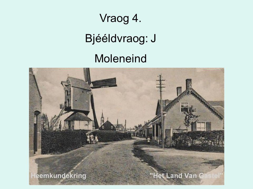 Vraog 4. Bjééldvraog: J Moleneind