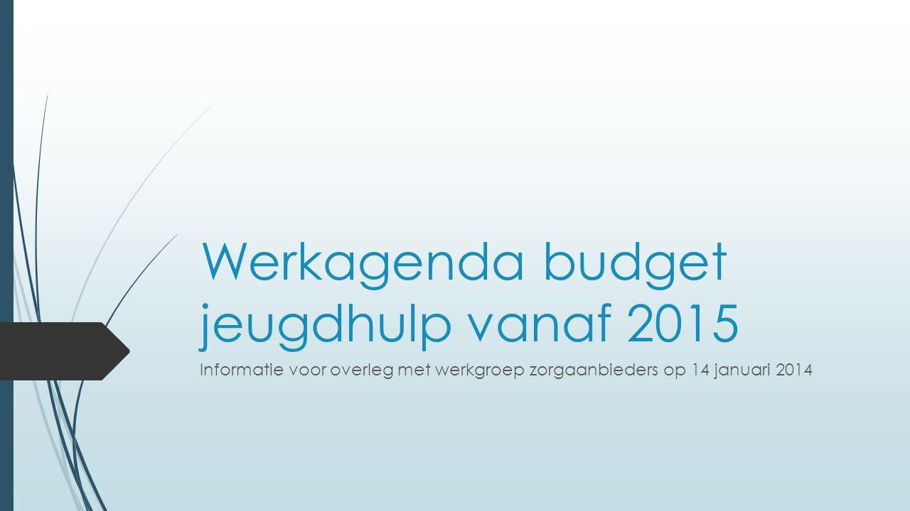 Werkagenda budget jeugdhulp vanaf 2015