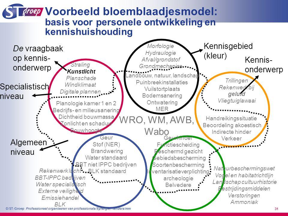 Voorbeeld bloemblaadjesmodel: basis voor personele ontwikkeling en kennishuishouding