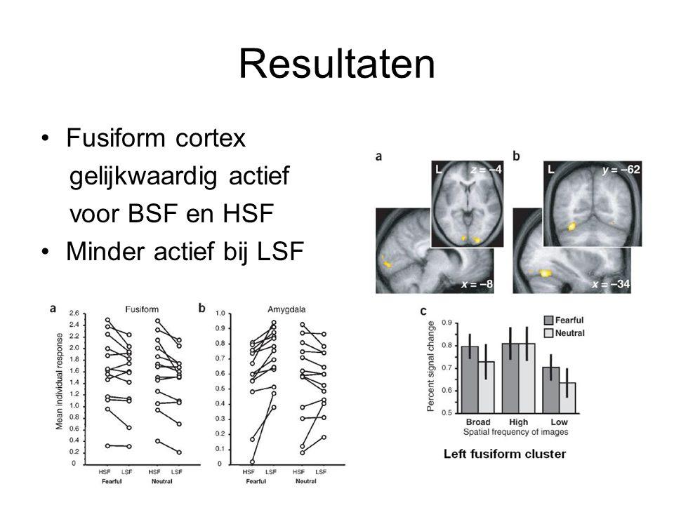 Resultaten Fusiform cortex gelijkwaardig actief voor BSF en HSF