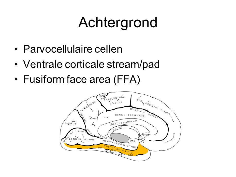 Achtergrond Parvocellulaire cellen Ventrale corticale stream/pad