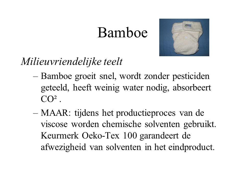 Bamboe Milieuvriendelijke teelt