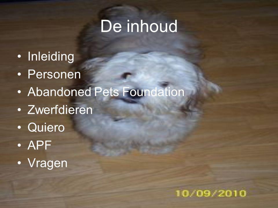 De inhoud Inleiding Personen Abandoned Pets Foundation Zwerfdieren