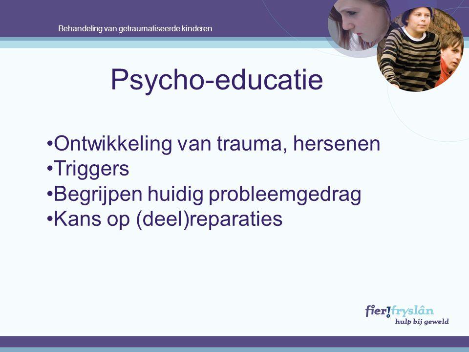 Psycho-educatie Ontwikkeling van trauma, hersenen Triggers