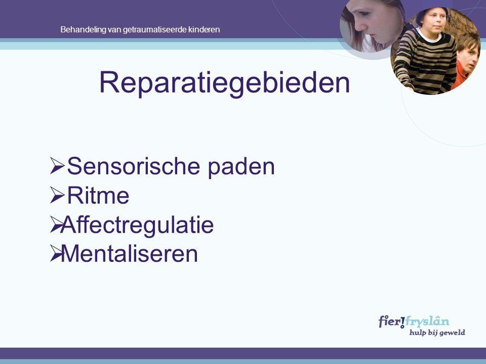 Reparatiegebieden Sensorische paden Ritme Affectregulatie Mentaliseren