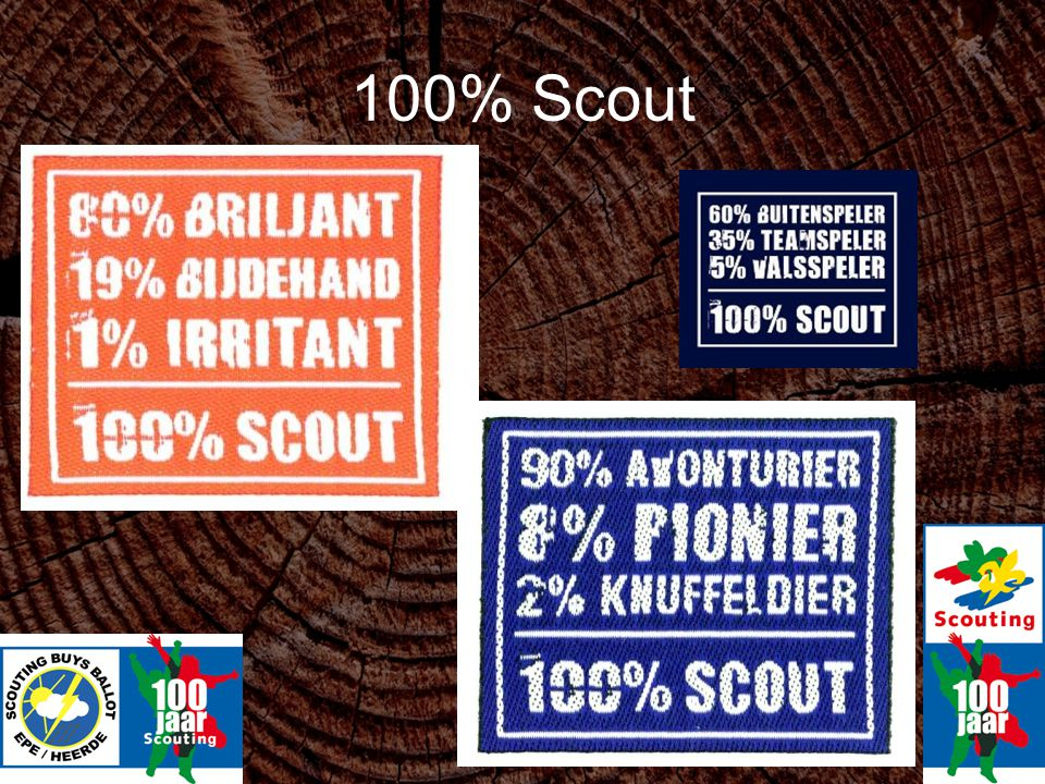 100% Scout