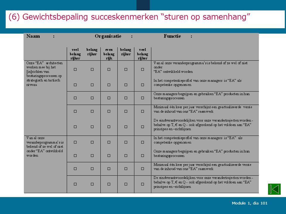 (6) Gewichtsbepaling succeskenmerken sturen op samenhang