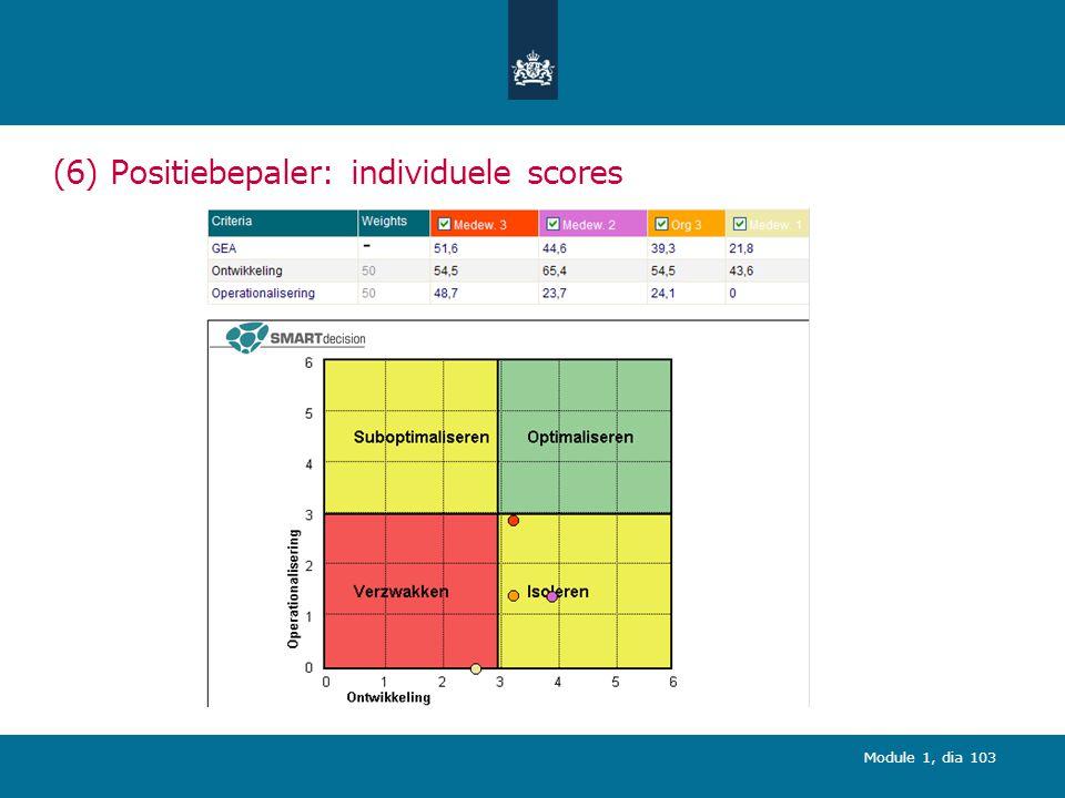 (6) Positiebepaler: individuele scores