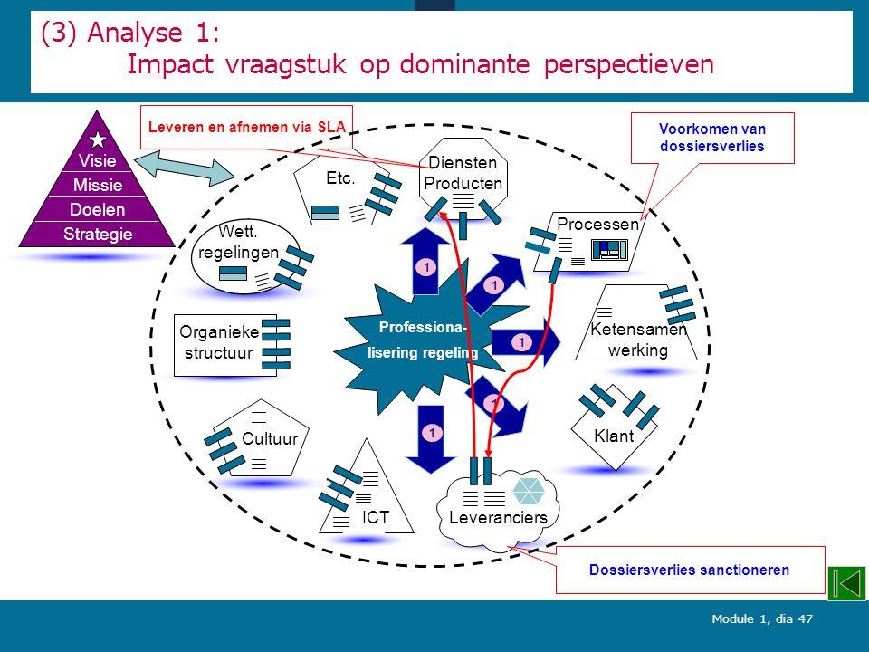 (3) Analyse 1: Impact vraagstuk op dominante perspectieven