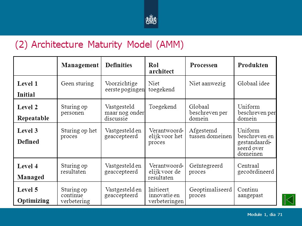 (2) Architecture Maturity Model (AMM)