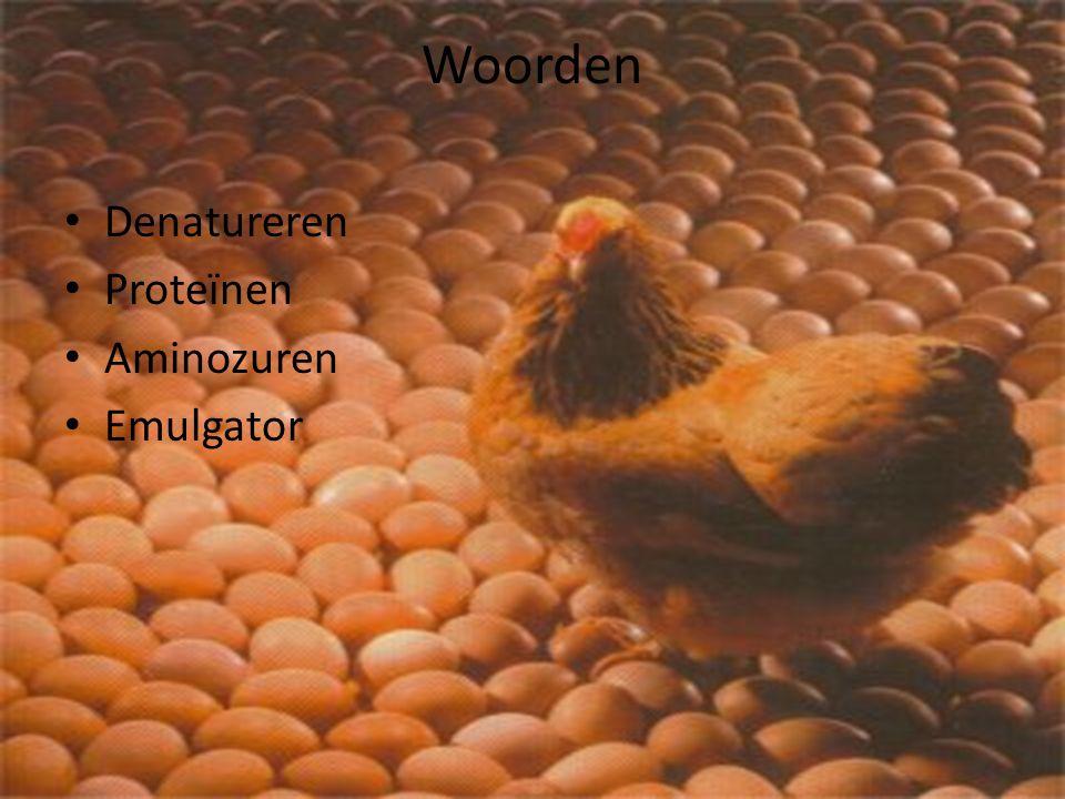 Woorden Denatureren Proteïnen Aminozuren Emulgator