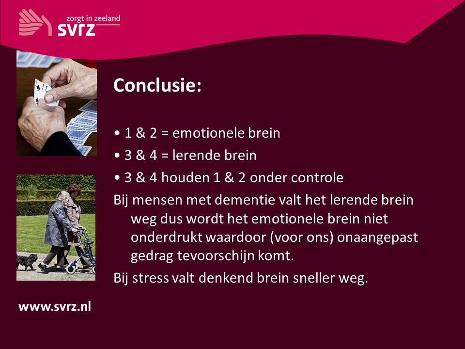 Conclusie: • 1 & 2 = emotionele brein • 3 & 4 = lerende brein
