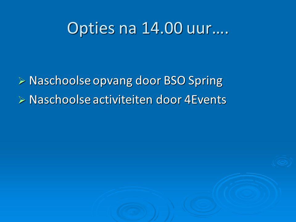 Opties na 14.00 uur…. Naschoolse opvang door BSO Spring