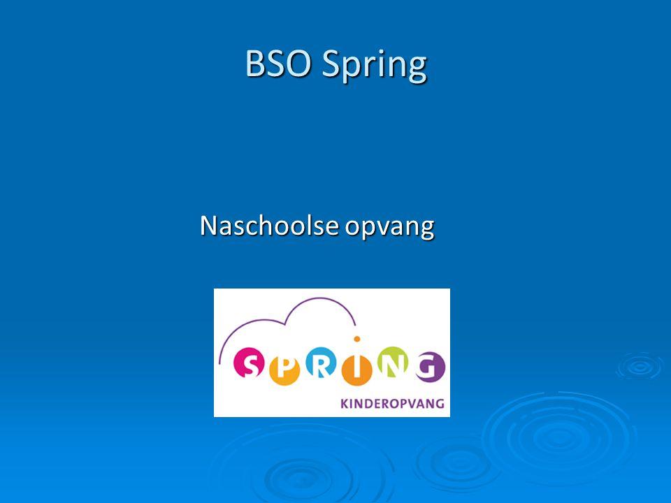BSO Spring Naschoolse opvang