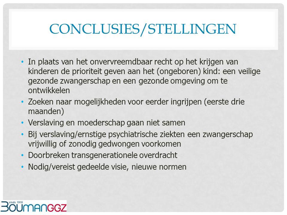 Conclusies/stellingen