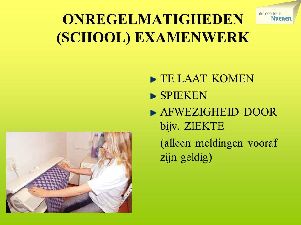 ONREGELMATIGHEDEN (SCHOOL) EXAMENWERK