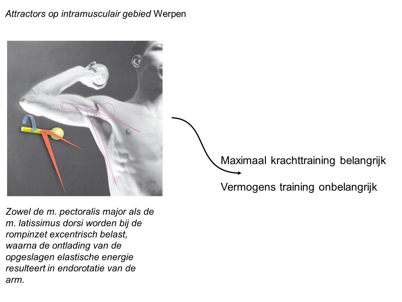 Maximaal krachttraining belangrijk Vermogens training onbelangrijk