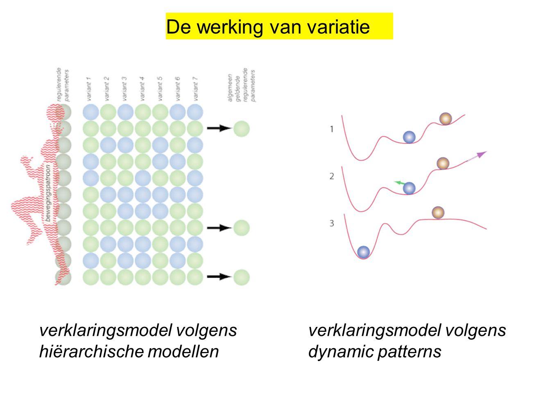 De werking van variatie