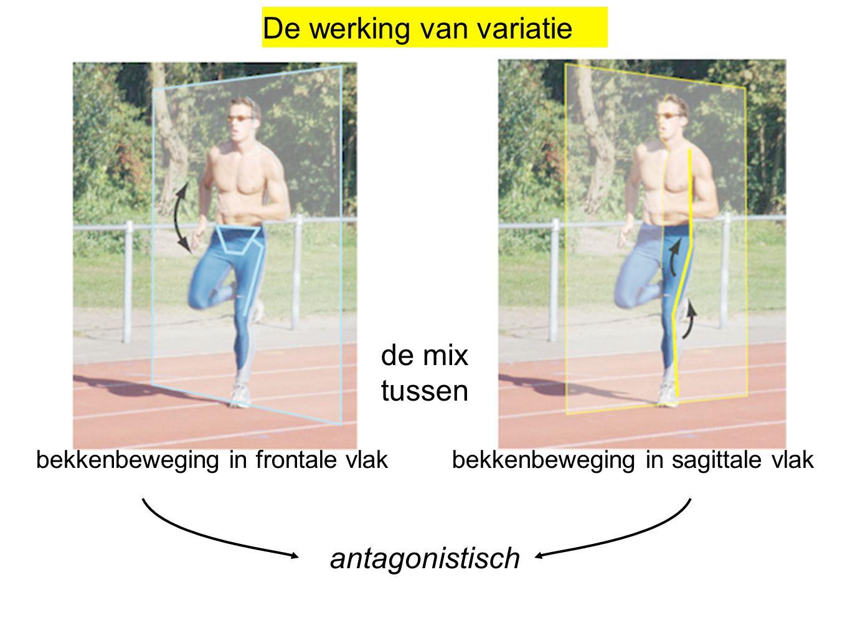 bekkenbeweging in frontale vlak bekkenbeweging in sagittale vlak