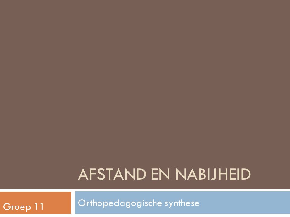 Orthopedagogische synthese