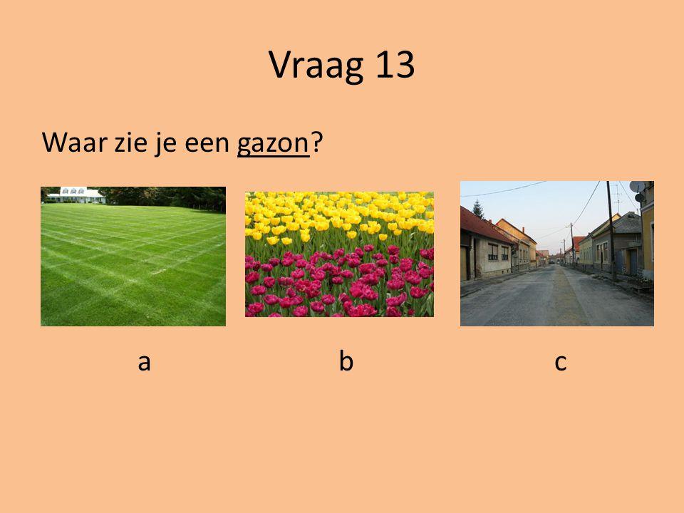 Vraag 13 Waar zie je een gazon a b c