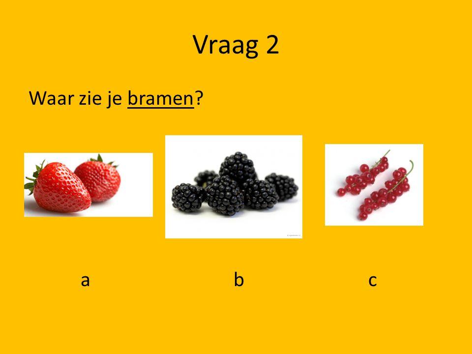 Vraag 2 Waar zie je bramen a b c