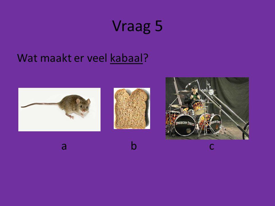 Vraag 5 Wat maakt er veel kabaal a b c
