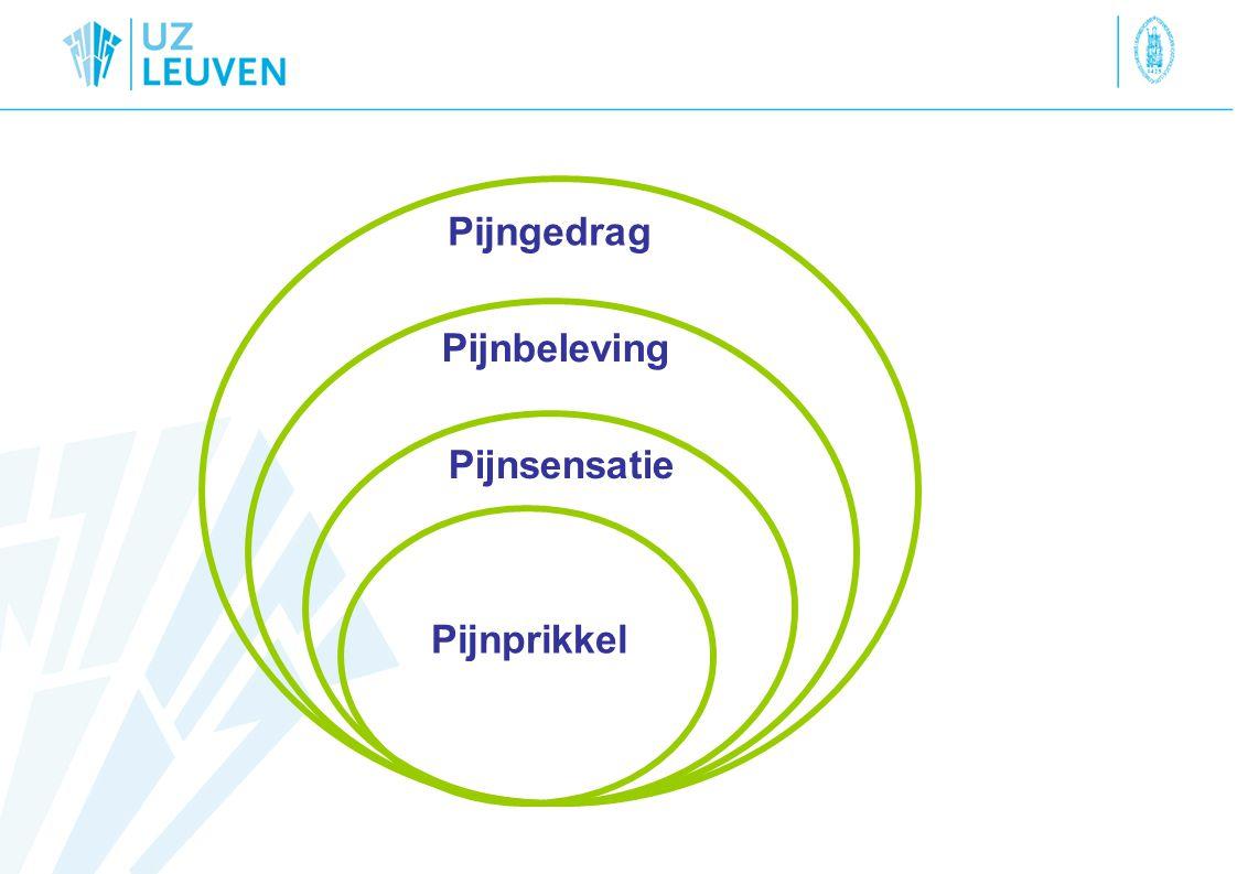 Pijngedrag Pijnbeleving Pijnsensatie Pijnprikkel