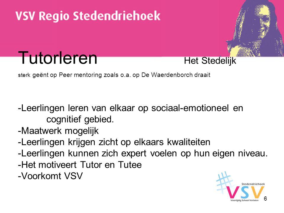 Tutorleren Het Stedelijk sterk geënt op Peer mentoring zoals o. a