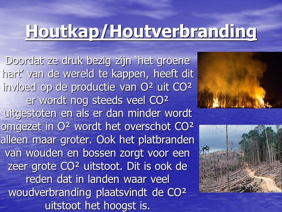 Houtkap/Houtverbranding