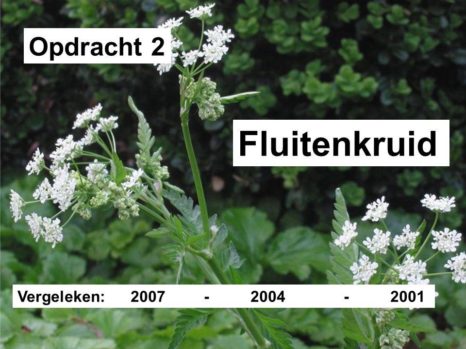 Opdracht 2 Fluitenkruid Vergeleken: 2007 - 2004 - 2001