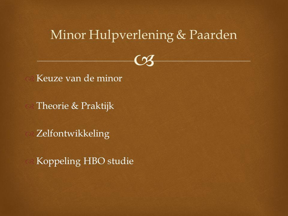 Minor Hulpverlening & Paarden