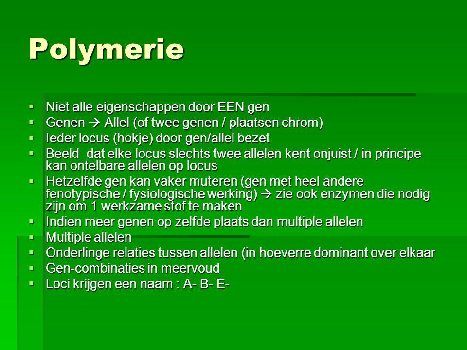 Polymerie Niet alle eigenschappen door EEN gen