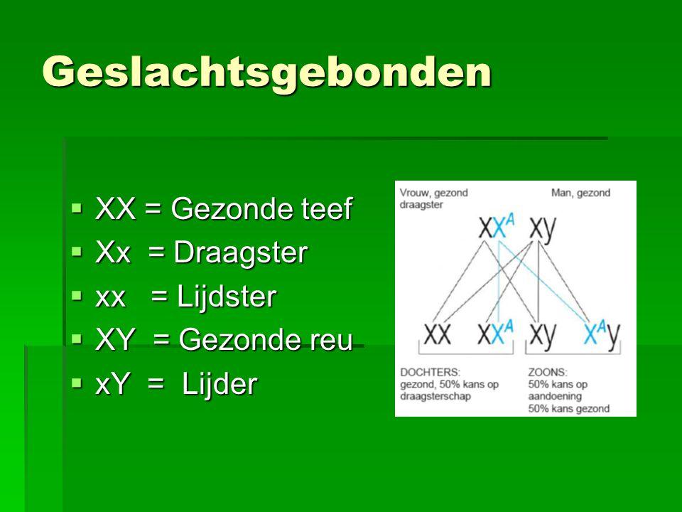 Geslachtsgebonden XX = Gezonde teef Xx = Draagster xx = Lijdster