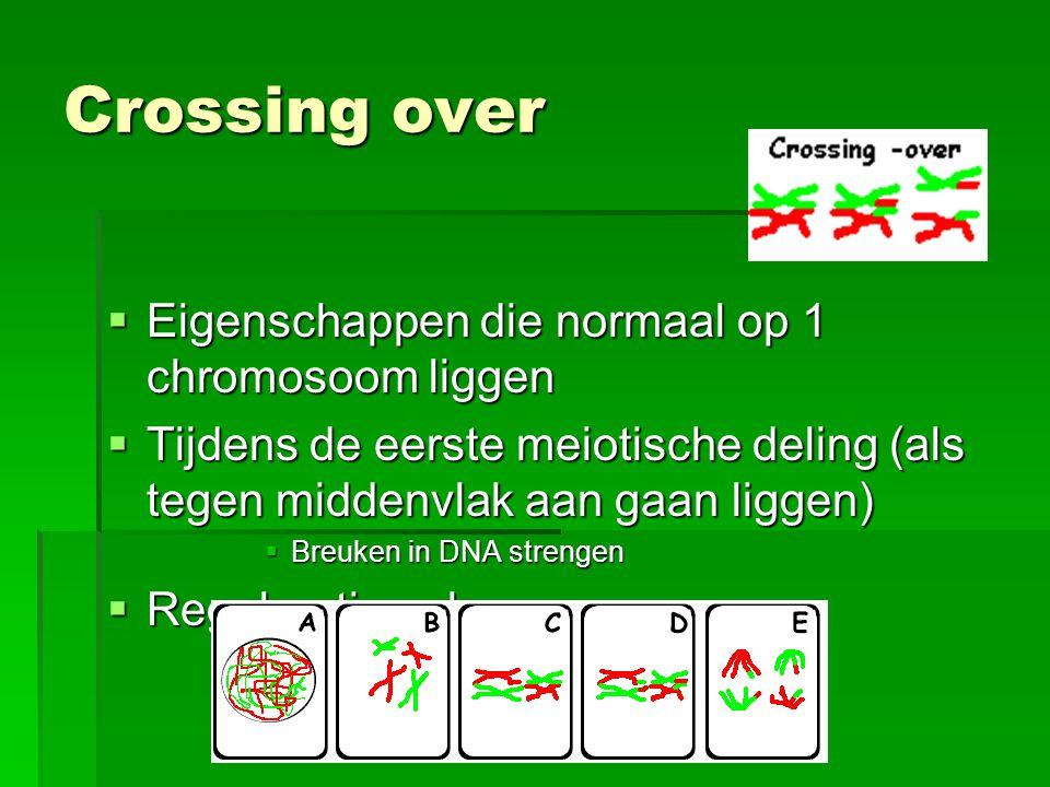 Crossing over Eigenschappen die normaal op 1 chromosoom liggen