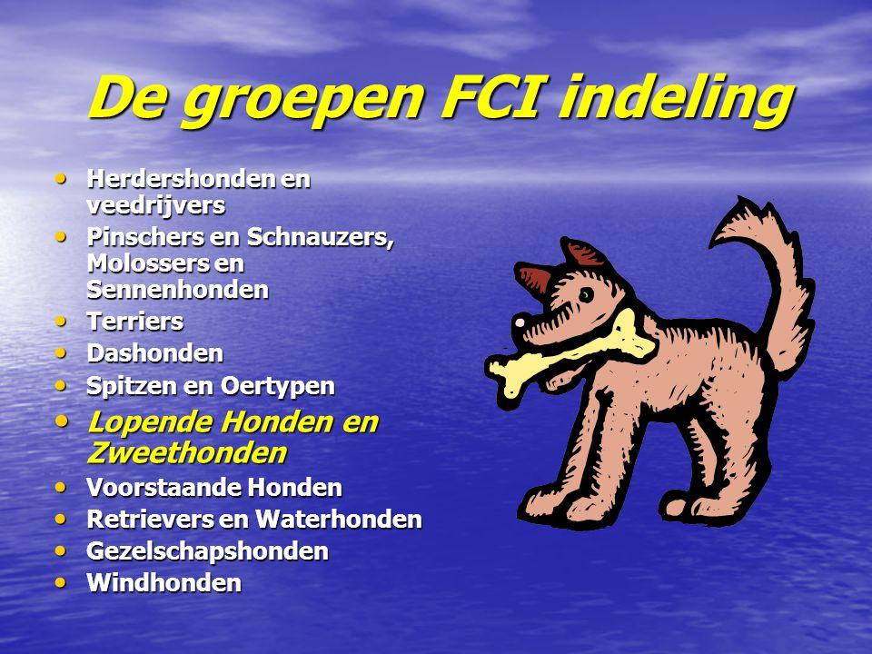 De groepen FCI indeling