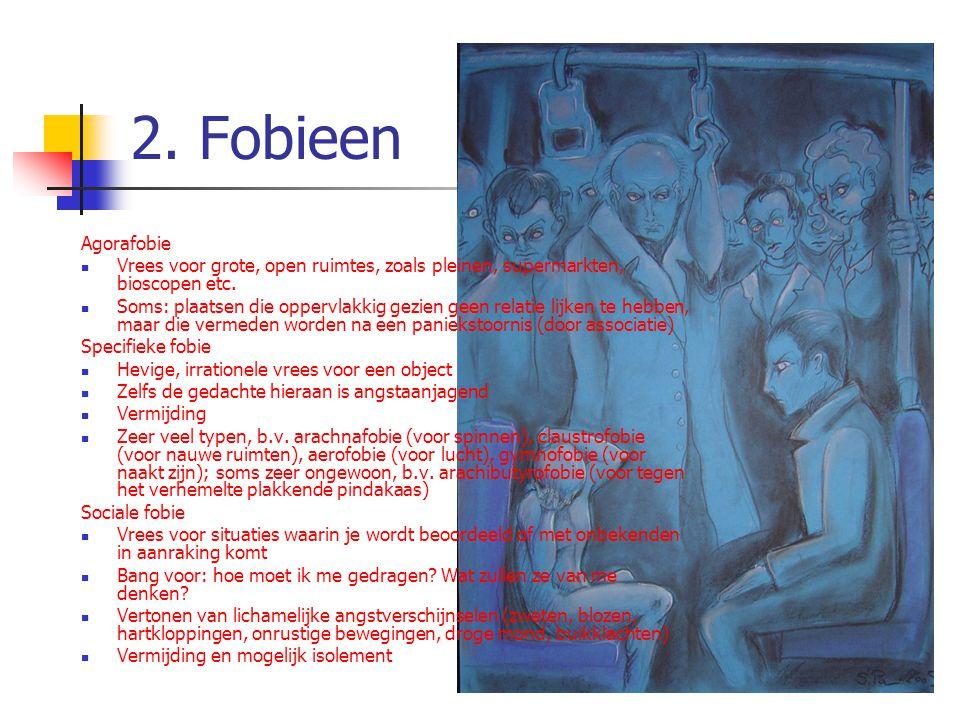 2. Fobieen Agorafobie. Vrees voor grote, open ruimtes, zoals pleinen, supermarkten, bioscopen etc.