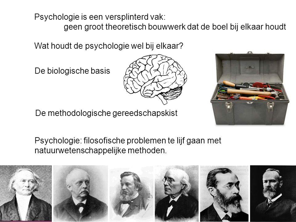 Psychologie is een versplinterd vak: