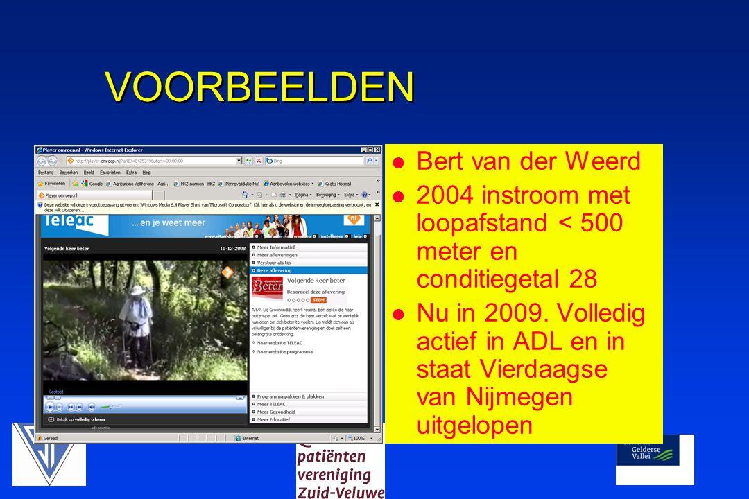 VOORBEELDEN Bert van der Weerd