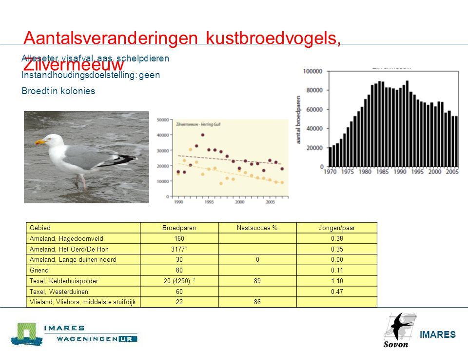 Aantalsveranderingen kustbroedvogels, Zilvermeeuw