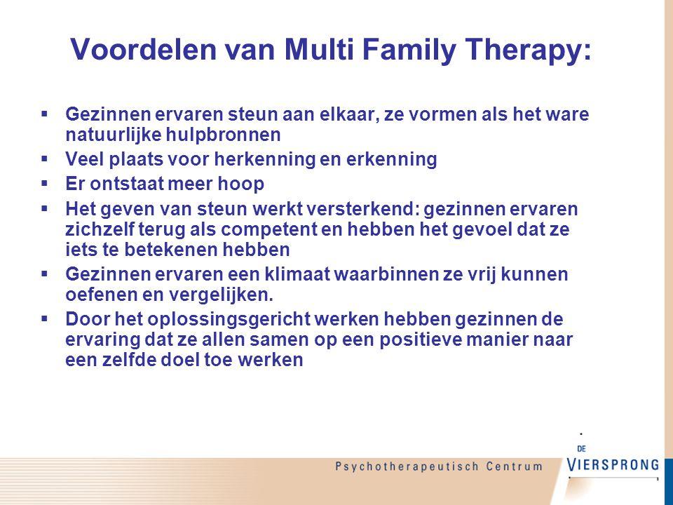 Voordelen van Multi Family Therapy: