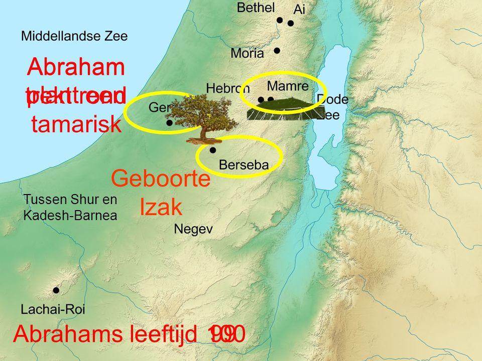Abraham plant een tamarisk Abraham trekt rond