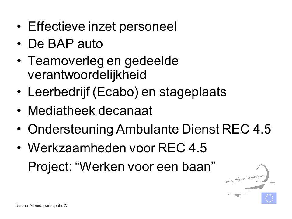 Effectieve inzet personeel De BAP auto