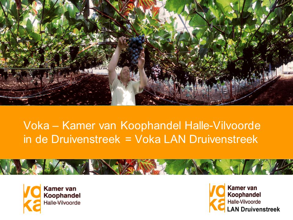 Voka – Kamer van Koophandel Halle-Vilvoorde in de Druivenstreek = Voka LAN Druivenstreek